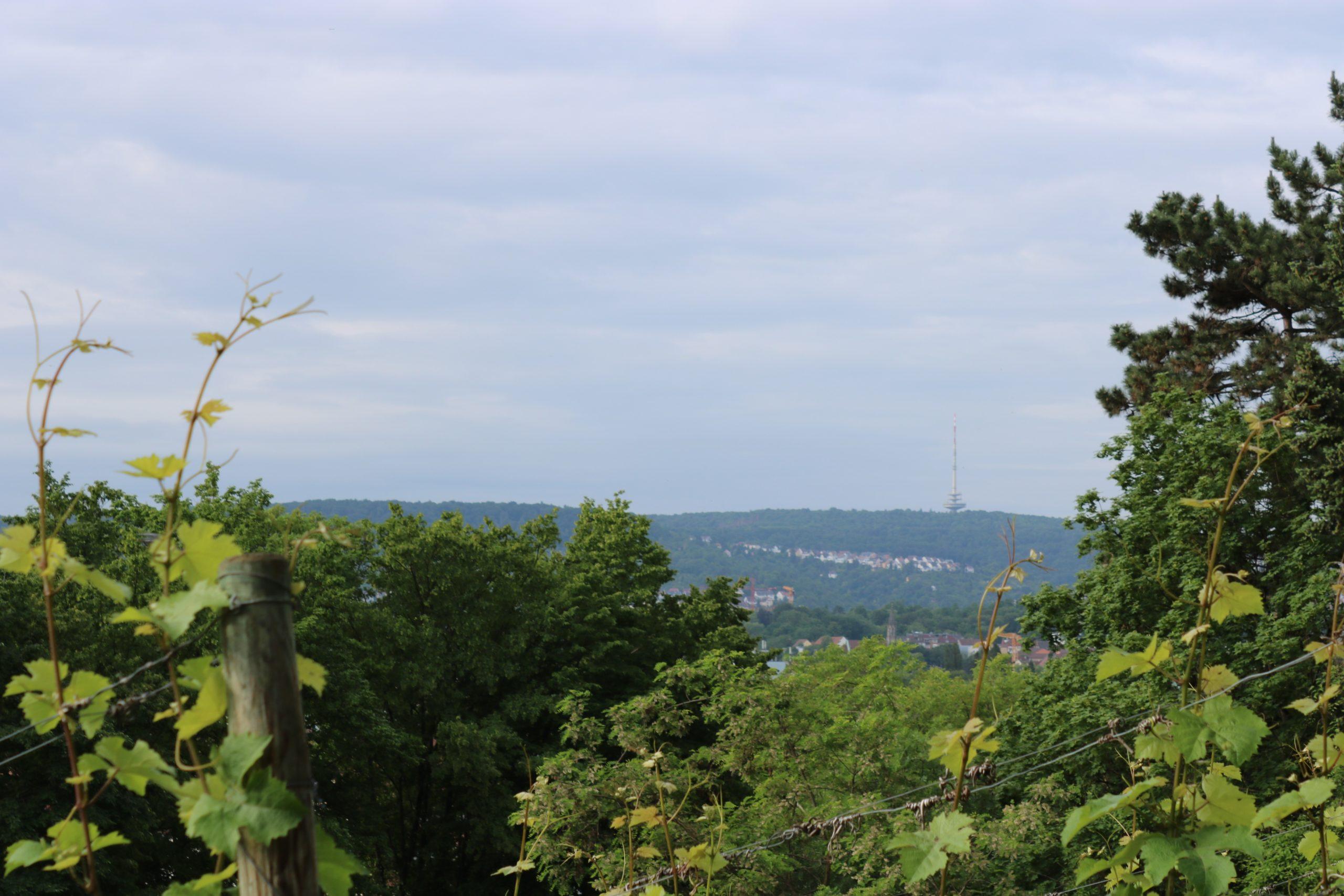 Fernsehtum Immobiliengutachter Stuttgart-1